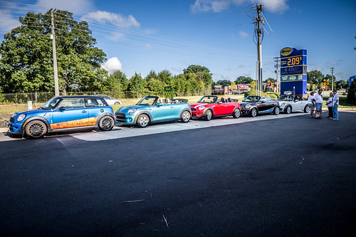 Bull Island with the Upstate Minis-100