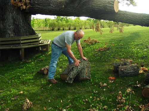 Dad moving the chunks of wood | by Opal in the rough