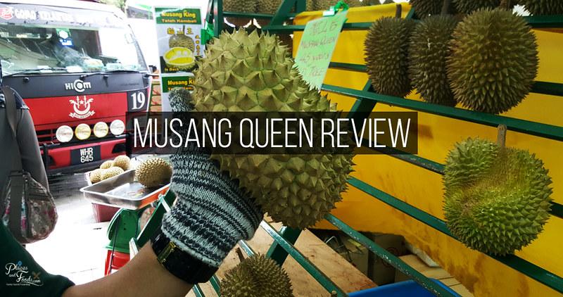 musang queen