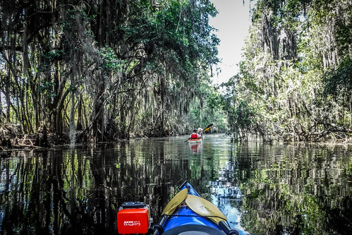 Lowcountry Unfiltered at Okefenokee-088