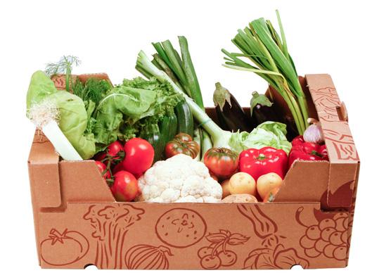 cesta ecológica fruta verdura