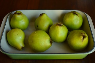 quince, pre-roast | by Marisa | Food in Jars