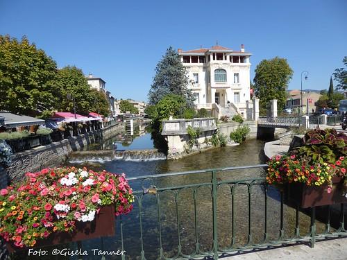 Südfrankreich in Grün ...