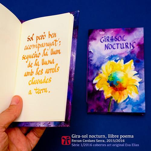 Llibre poema Gira-sol nocturn de Ferran Cerdans