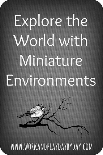 Miniature Environments Title