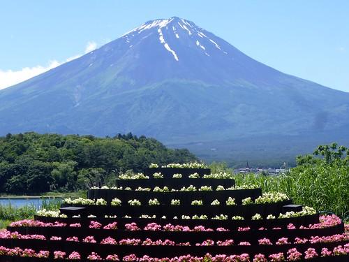 jp16-Fuji-Kawaguchiko-Nord-Shizen Seikatsu-kan (12)