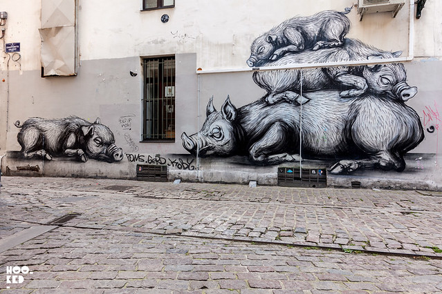 ROA_Brussels_HOOKEDBLOG_PHOTO_©2016_MARK_RIGNEY