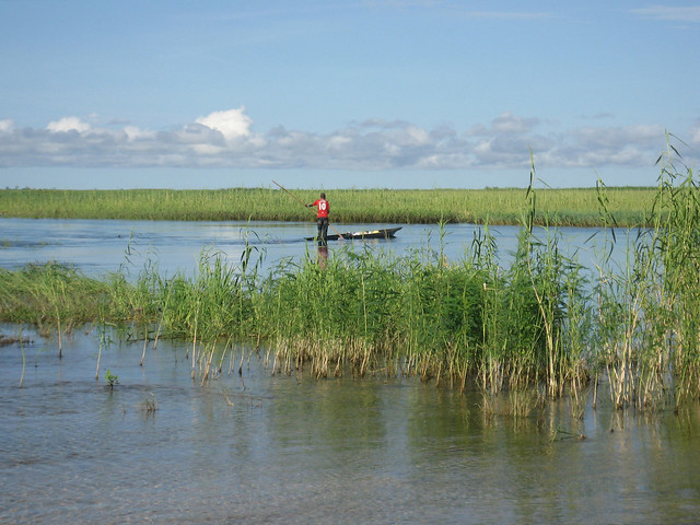 Trader going out to buy fish from fishers in Barotse Floodplain, Zambia. Photo by Kate Longley, 2013.