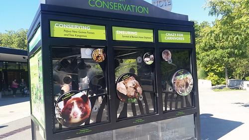 Woodland Park Conservation Animals