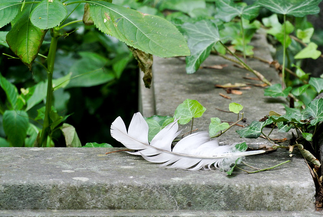 Judischer Friedhof Weissensee_2016-25