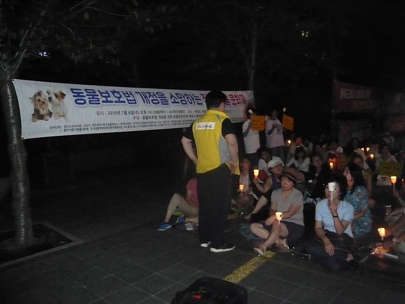 Candlelight vigil for the APL amendment_072716
