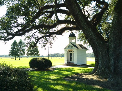 St. Leo woods chapel