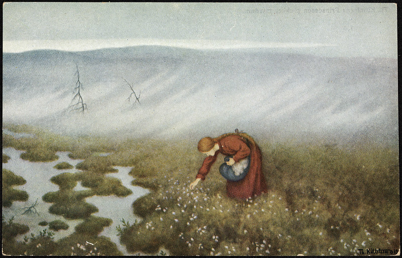 Theodor Kittelsen - Princess Collecting Cotton
