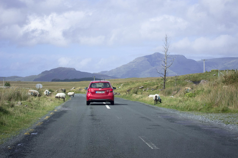 Rural Irish road, Co. Galway