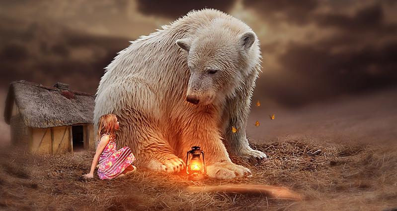 Bear or Dog