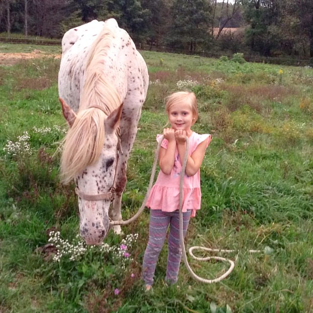 Oh, just taking her horse for stroll. Who needs a dog?!?