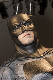 BATMAN100_HotToys_2-31