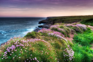 Dunmore East Cliff Walk | by Dunmore Studio