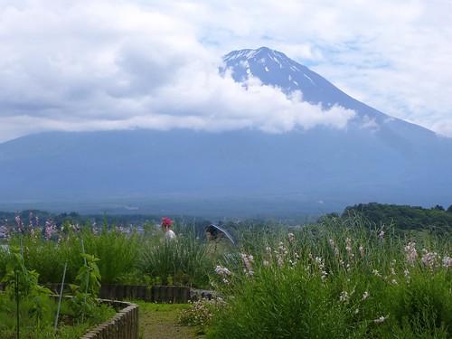 jp16-Fuji-Kawaguchiko-5a7 (4)