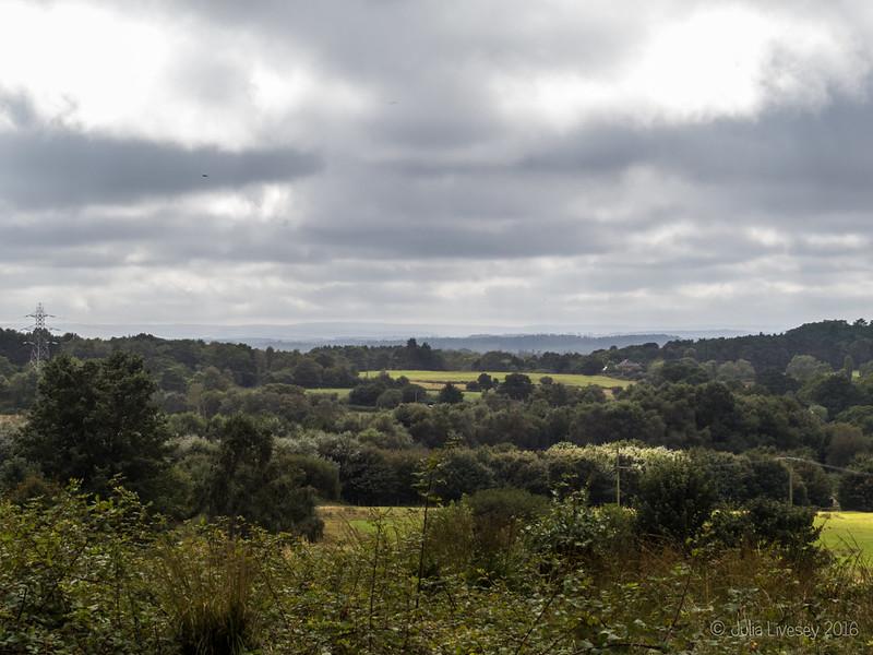 View towards Lychett Matravers