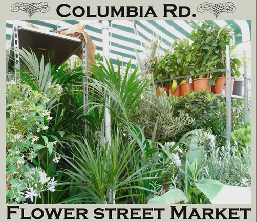 columbia street market slideshow4