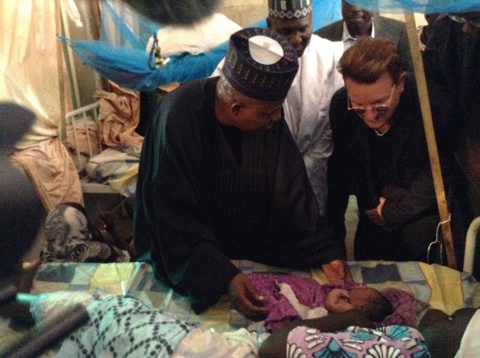 Dangote Bono Borno 1