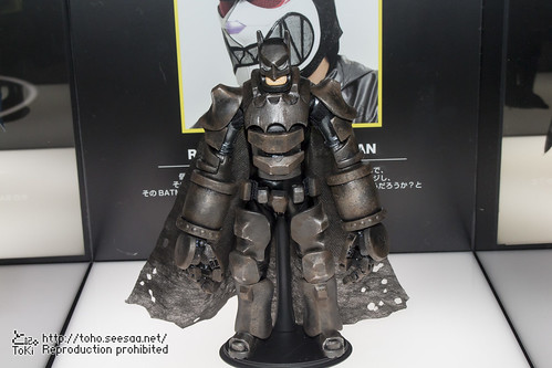 BATMAN100_HotToys_2-727