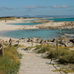 Platja de Llevant, Formentera