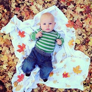 Changing leaves, changing boy. He's growing up too fast! #dailyjohn | by Completely Delicious
