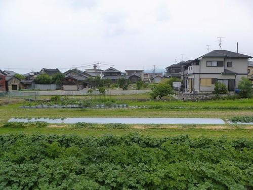 jp16-Nara-j2-balade3 (13)