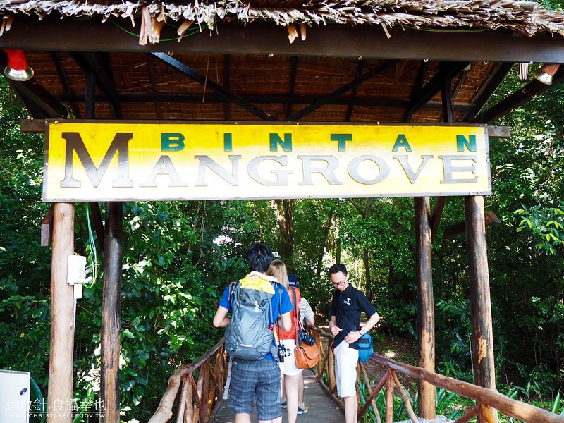 印尼民丹島 Bintan, Indonesia