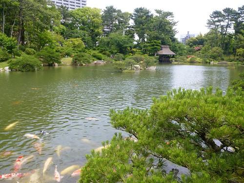 jp16-hiroshima-shukkei-en (2)