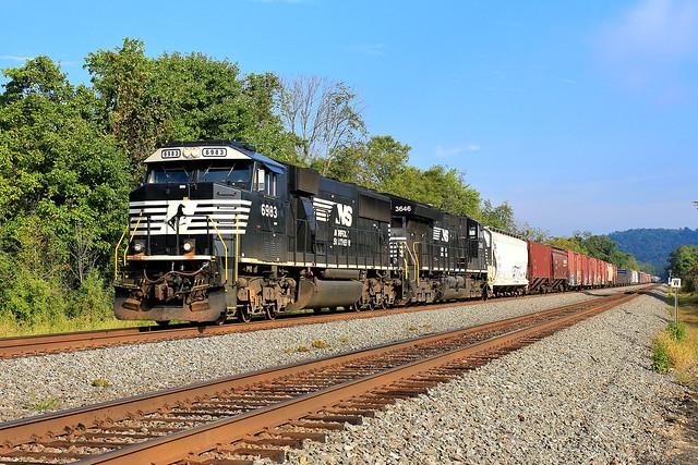 NS 6983 on 10N