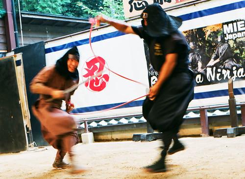 Iga Ninja_01