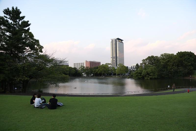 坐在草皮上看湖看大樓