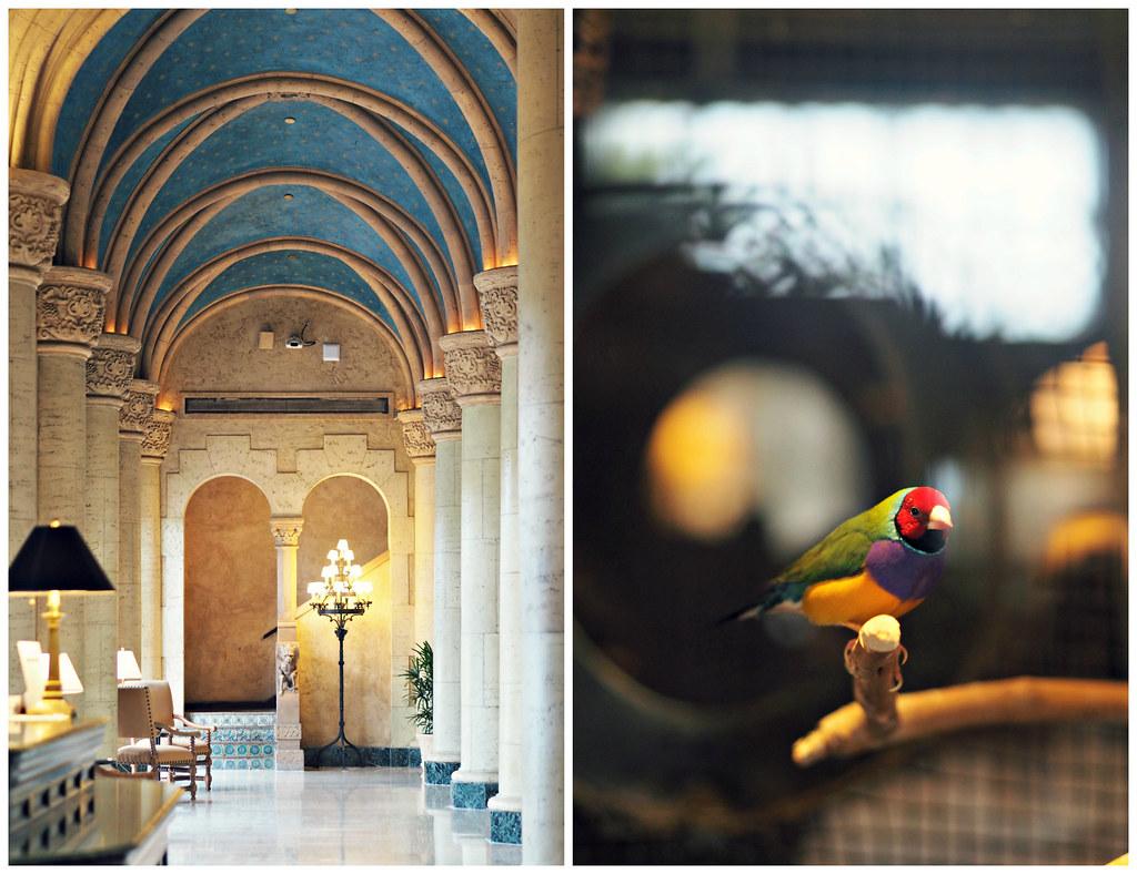 The Little Magpie Miami Photo Diary 19