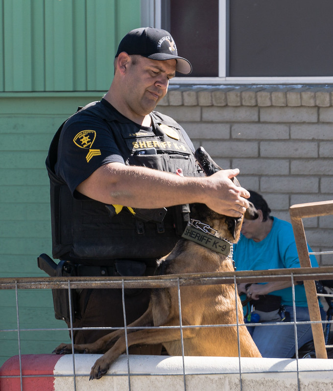 Police Sargent with K-9