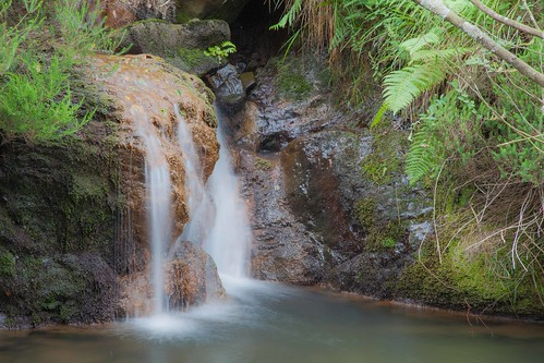 Parque Natural de #Gorbeia #DePaseoConLarri #Flickr - -7986