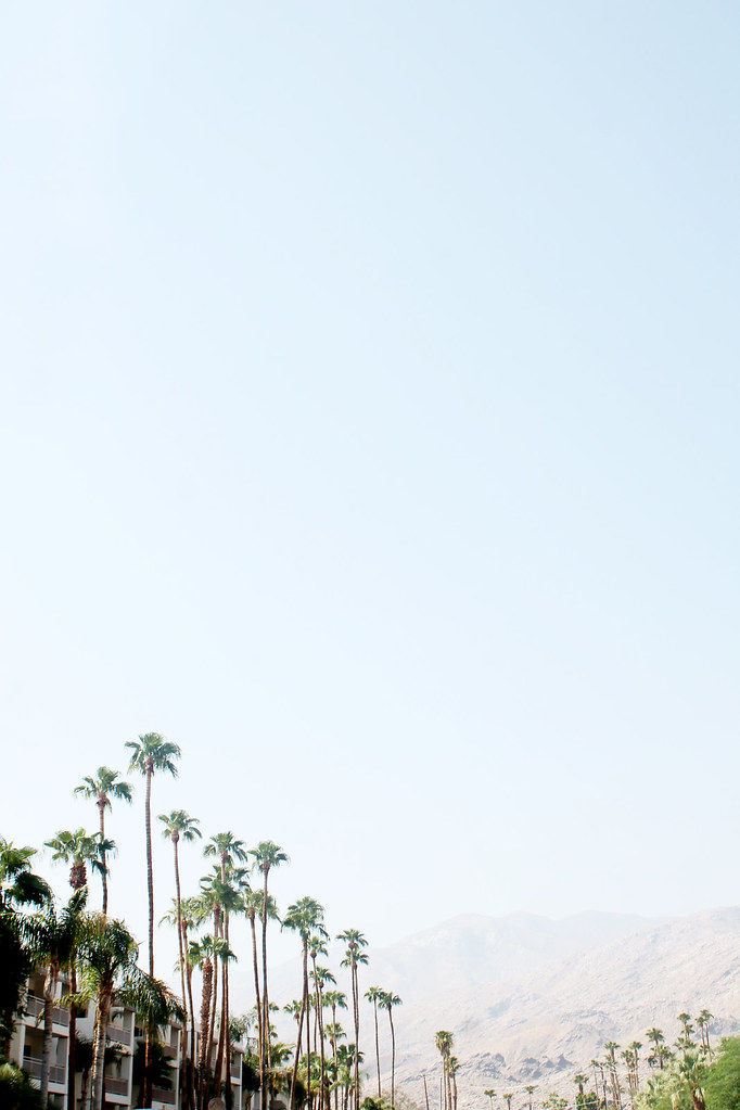 palm springs august 2016