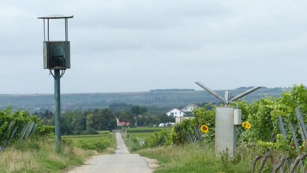 Ausguck und Schussapparat zwischen Worms und Osthofen