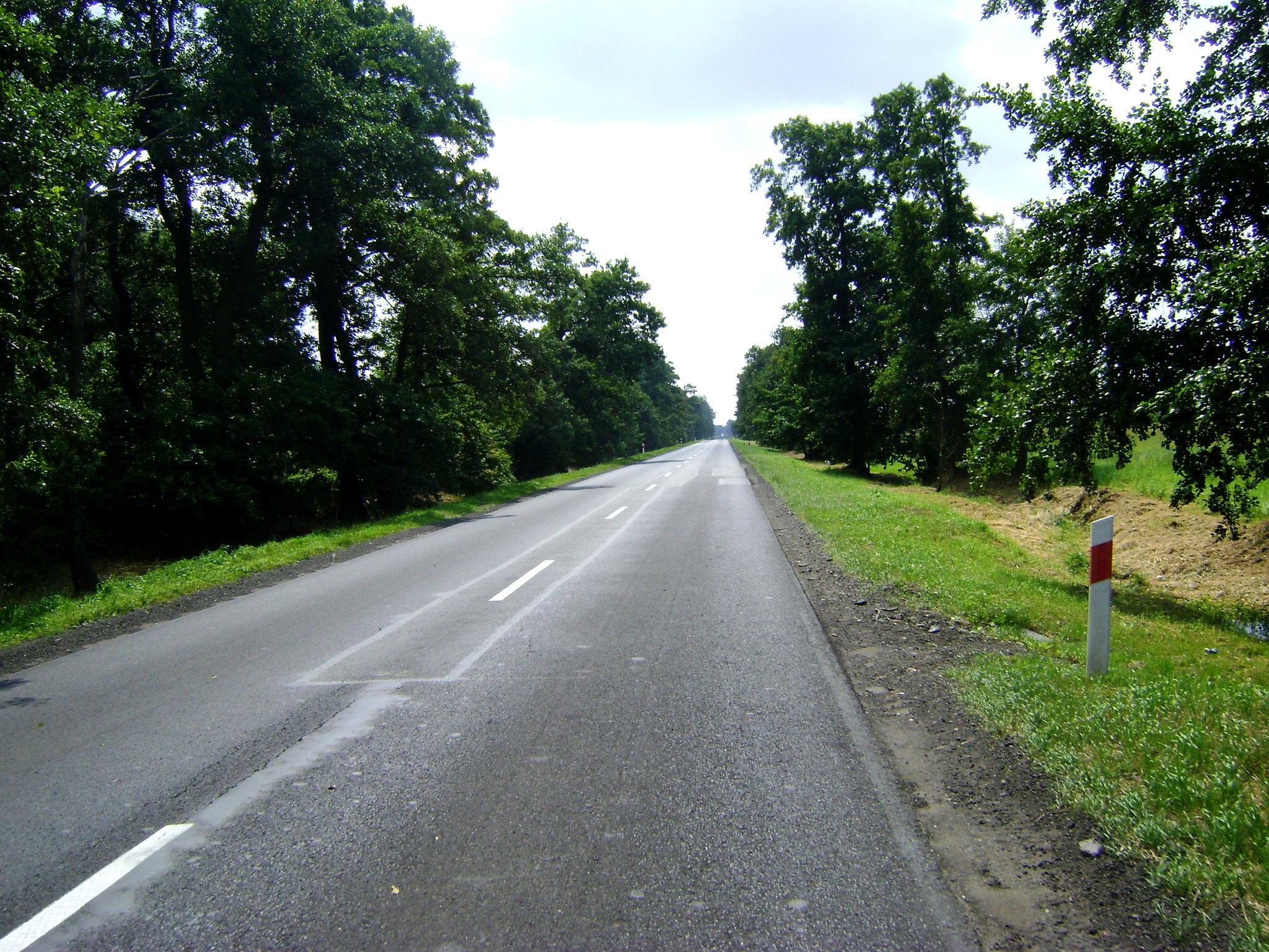 w drodze powrotnej płasko i nudno, DW 702