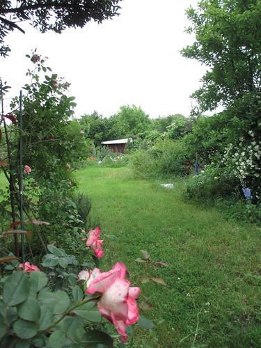 Un jardin miracul c 39 est un jardin comme on en voit for B b un jardin en ville brussels