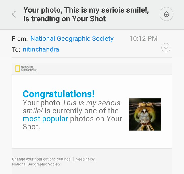 Your photo, This is my seriois smile!, is trending on Your Shot