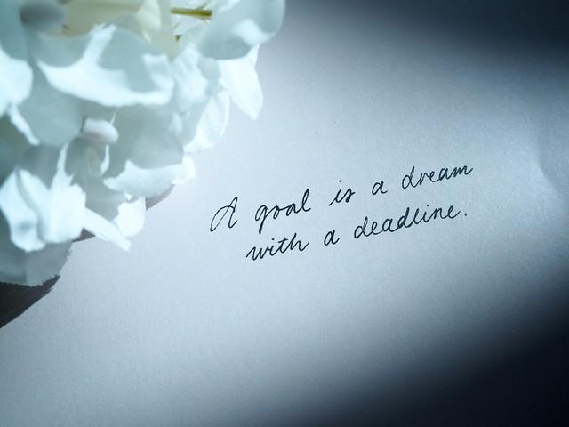 alexadagmarbookP8174488, goal, dream, white hydrangea, sentence, book, kirja,