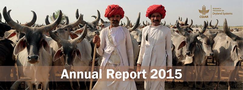 Annual Report 2015 MailChimp_02