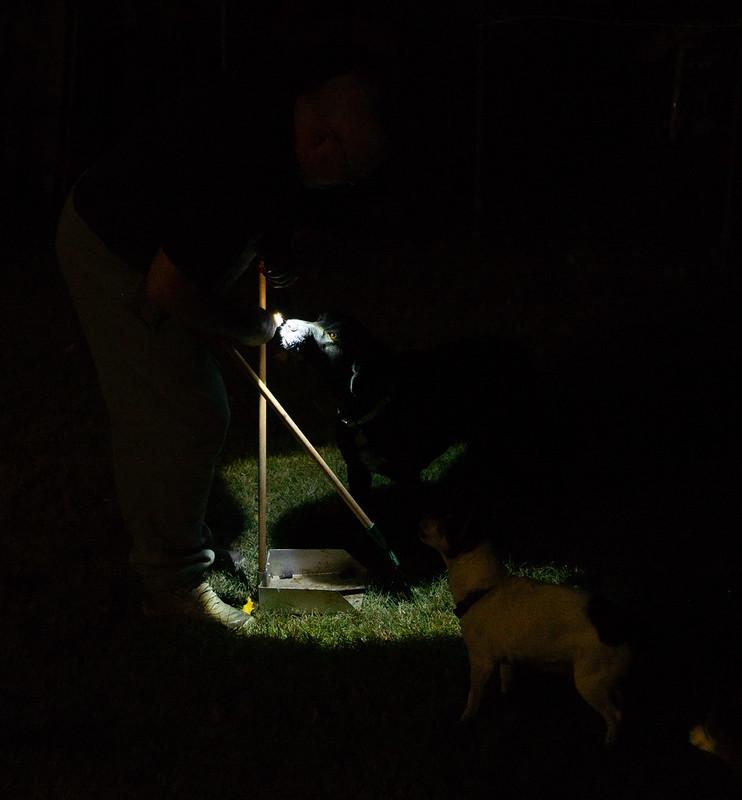 Scooping Yard at Night