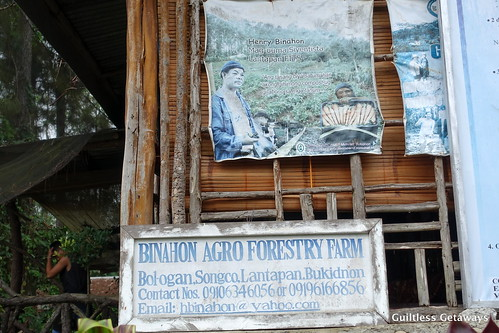 binahon-agroforestry-farm.jpg