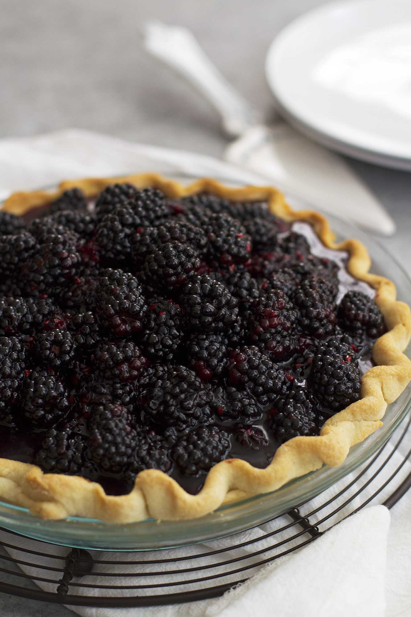 Blackberry Black Bottom Pie | girlversusdough.com @girlversusdough