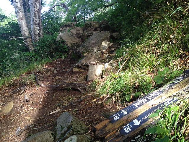 白山 平瀬道 登山口から2.0km地点