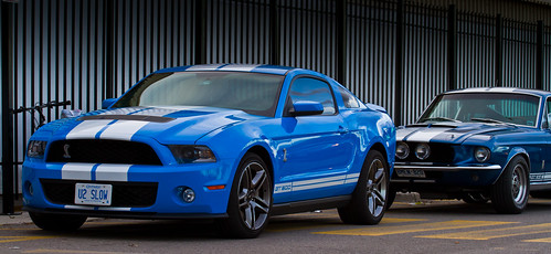 Which GT500 would you take? | by Greg David